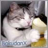 Bakudanx